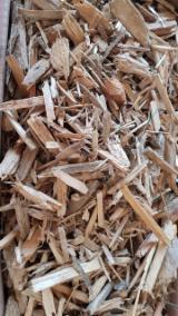 South Africa - Fordaq Online market - Gum Wood Chips, 1+ mm