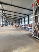 Vendo Produzione Di Pannelli Di Particelle, Pannelli Di Bra E OSB Xinyang Usato Cina