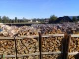 薪材、木质颗粒及木废料 - 劈切薪材 – 未劈切 碳材/开裂原木 灰色阿尔德木, 桦木, 鹅耳枥