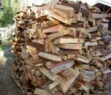 Ukrajina ponuda - Bukva, Breza, Grab Drva Za Potpalu/Oblice Cepane Ukrajina