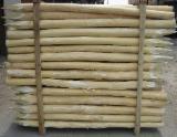 Cele mai noi oferte pentru produse din lemn - Fordaq - Stâlpi, Lemn Rotund Calibrat, Salcâm
