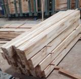 Offers Indonesia - Rubberwood/ Mahogany Glued Panels, 31 mm
