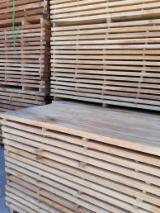 Sawn and Structural Timber - Beech lumbers
