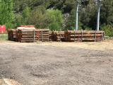 Forest and Logs - Douglas Fir 15-55 cm ABC Saw Logs from France