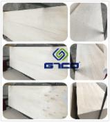 Plywood For Sale - 820*2150*4/4.5mm packing plywood for wooden box