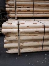 Pine  - Redwood Softwood Logs - HT Pine/ Spruce Poles