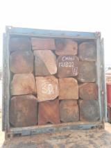 Forest And Logs Africa - Timber logs for sale