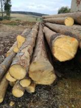 Offres Slovaquie - Vend Grumes De Sciage Epicéa - Bois Blancs