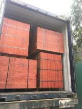 null - Cheap Shuttering Plywood - Eucalyptus Plywood
