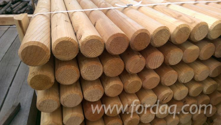 Wholesale Larch 5; 7; 8; 9; 10; 12; 14 cm a/b/c Poles Poland