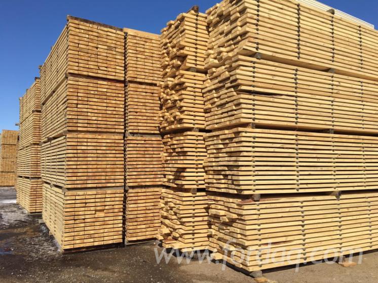 Global Biznes Sp Z Oo Eksporter Drewna