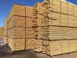 Siberian Larch sawn timber edged , KD, 25; 29; 32; 50 mm