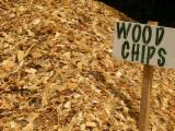 Firewood, Pellets And Residues - Wood chips from forest
