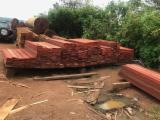 Pallet lumber - Padouk Packaging timber from Cameroon