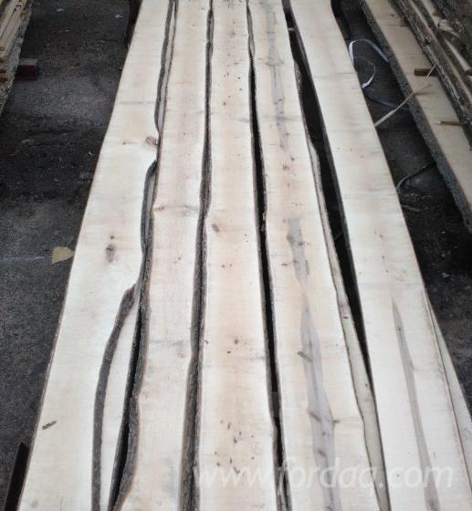 Maple-Unedged-Timber-from-Ukraine--KD-12-