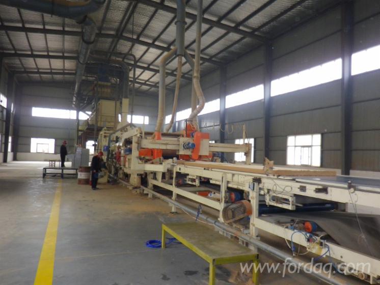 New-Shanghai-Panel-Production-Plant
