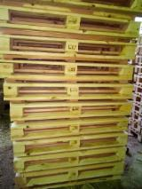 Trouvez tous les produits bois sur Fordaq - YUKOMtrade Sp. z o.o./LLC JUKOM-prom - Vend Palette Tous Pologne