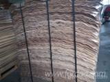 Sprzedaż Hurtowa Okleina Z Twardego Drzewa I Egzotyczna Z Całego Świata - Topola, Klon I214, Owodowo Skrawane