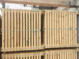 Embalagens de madeira Pinus - Sequóia Vermelha Recém Cortada À Venda