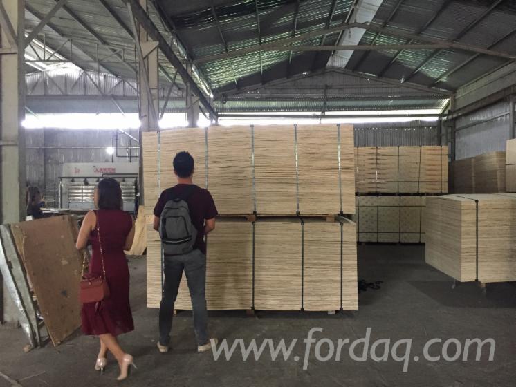 Okoume/ Bintangor Face Packing Plywood, 7 - 14 mm