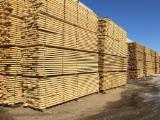 Mercato del legno Fordaq - Vendo Decking Antisdrucciolo (2 Facce) Larice Siberiano Irkutsk