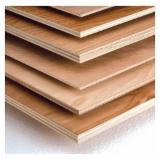 Plywood Panels - Eucalyptus Plywood, BB/CC Grade, 6/8/9/12/15/16/18 mm Thickness.