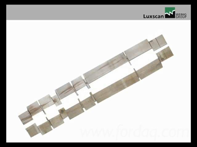 Holzscanner für Optimier-Kappsägen - CombiScan Evo
