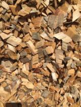 Energie- Und Feuerholz Südamerika - Eukalyptus Waldhackschnitzel