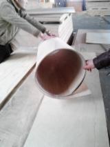 弹性胶合板
