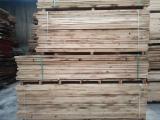 Planks (boards), Oak, PEFC