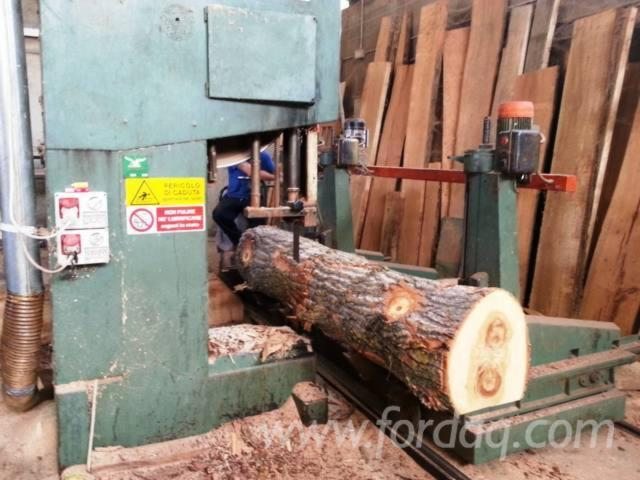 Used-Artiglio-ST110-Log-Band-Saw