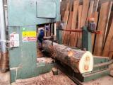 Finden Sie Holzlieferanten auf Fordaq - Trademak srl - Gebraucht Artiglio ST110 1990 Blockbandsäge, Vertikal Zu Verkaufen Italien
