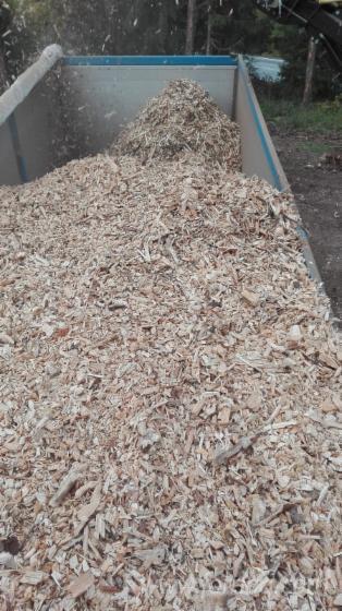Jela--Bjelo-Drvo-Piljevina-Iz-%C5%A0ume-PEFC-FFC