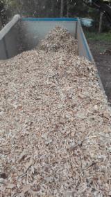 薪材、木质颗粒及木废料 - 木芯片 – 树皮 – 锯切 – 锯屑 – 刨削 取自森林之木芯片 云杉