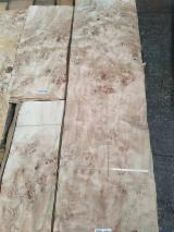 Natural Mappa Burl Wood Veneer, 0.35mm Thickness for Promotion
