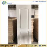 white premier HDF Flush Door
