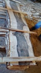 Zobacz Dostawców I Kupców Drewnianych Desek - Fordaq - Tarcica Nieobrzynana