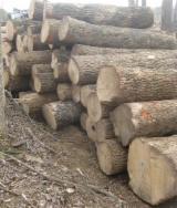 Forêts Et Grumes - Vend Grumes De Sciage Frêne Northern Appalachian