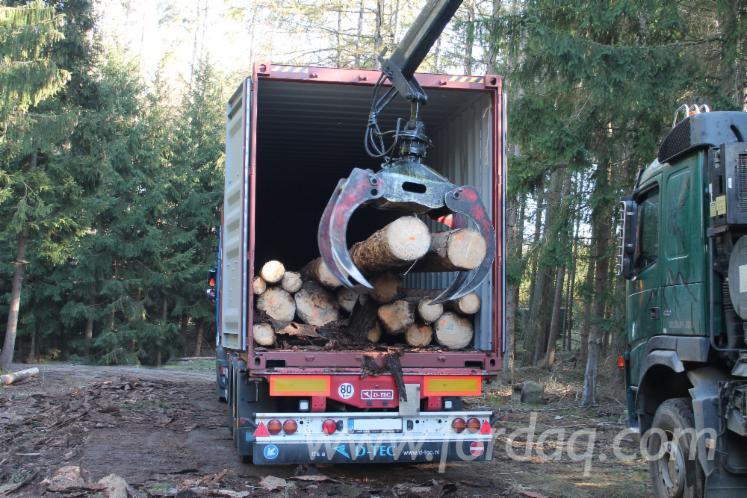 Schnittholzstämme, Fichte
