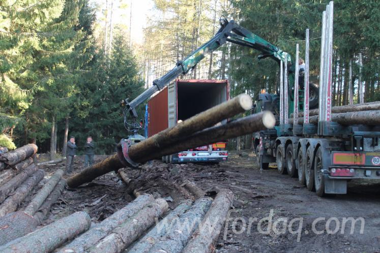 Spruce Logs from Czech Republic, 20+ cm