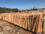 木皮供应网络 - 批发硬木木皮和热带木木皮 - 尤加利树, 旋切