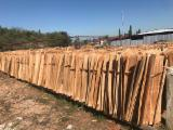 Furnierhandel - Laub Und Tropenholzfurnier - Eukalyptus, Rundschälfurnier