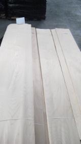 Veneer and Panels - Rotary Cut Birch Veneer, 0.55 mm