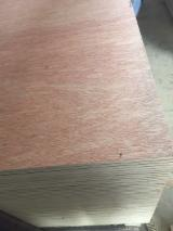 5/7/8/8.5/11/11.5/14/18 mm Commercial Plywood with Red Face from Vietnam Supplier.