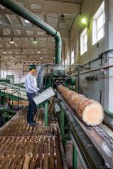 Cherestea Tivita Rasinoase - Lemn Pentru Constructii - Vand Cherestea Tivită Pin Rosu FSC 17-240 mm