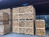 薪材、木质颗粒及木废料 - 劈切薪材 – 未劈切 碳材/开裂原木 榉木, 橡木