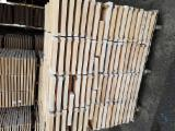 Find best timber supplies on Fordaq - Beech Squares Belgium