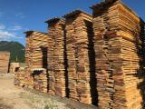 Find best timber supplies on Fordaq - SEGHERIA GRANDA LEGNAMI SRL - Beech timbers
