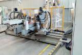 BALESTRINI LYNX / MD (TE-011482) Double End Tenoning Machine