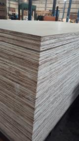 Vietnam Eucalyptus Commercial Plywood, AB, 18 mm